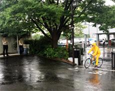 傘さし運転立哨