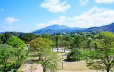 写真 - 岡崎公園・東山