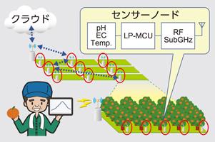 IT農業ソリューション
